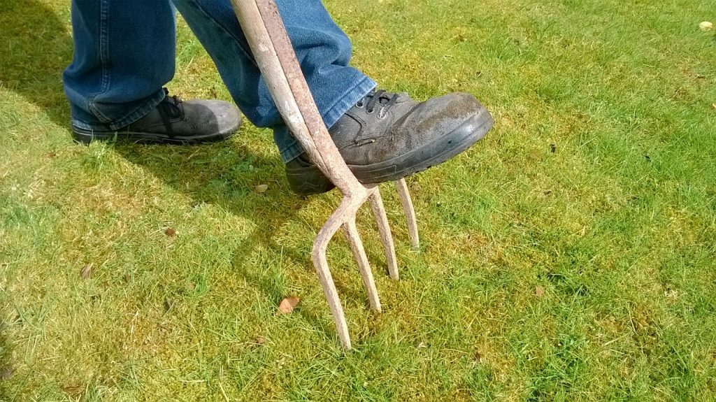 lawn aeration for a thicker lawn