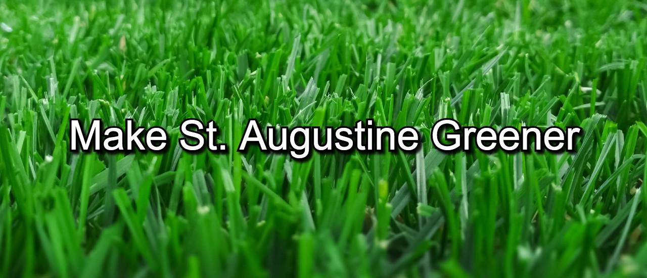 make st augustine greener