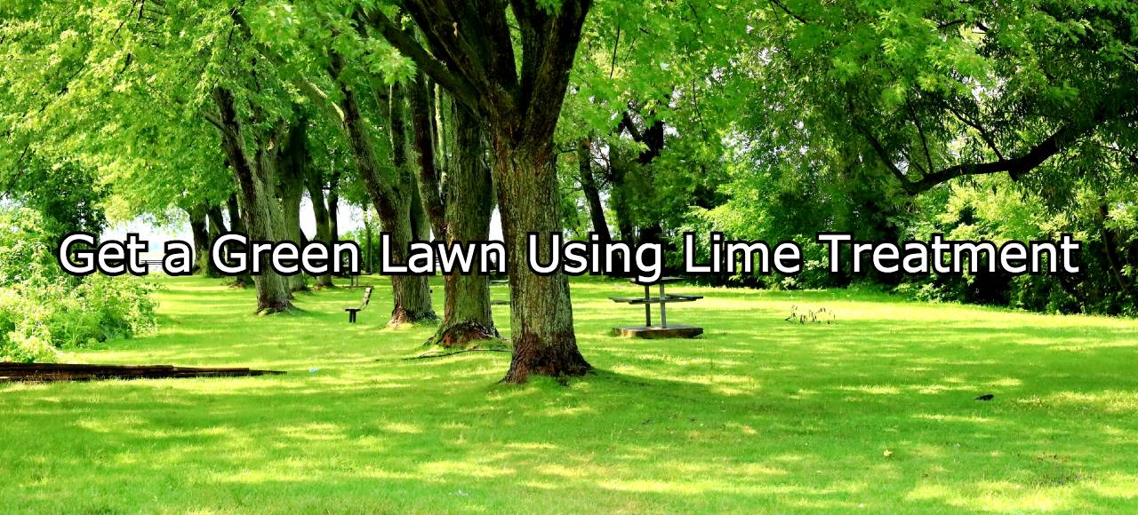 Best lime treatment for lawn