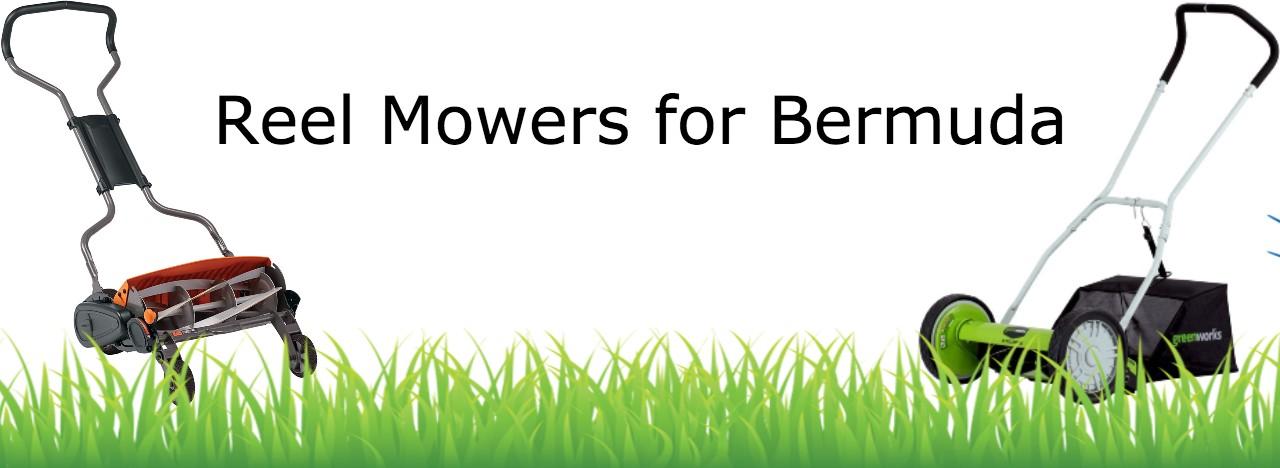 best reel mowers for bermuda